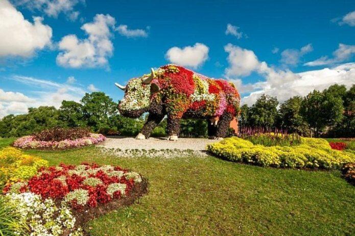 Ventspilio miesto šventė, gėlės, fontanai ir karvutės!